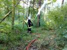 Einsatzübung Schwerpunkt Waldbrand
